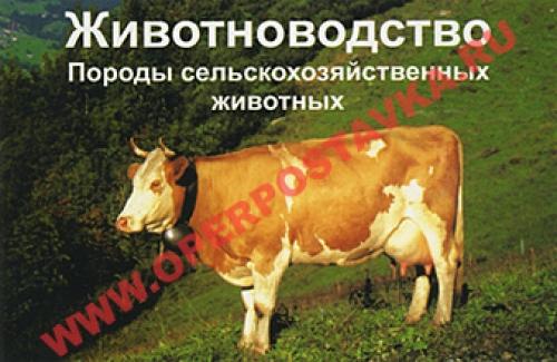 """Слайд-комплект """"Животноводство. Породы сельскохозяйственных животных"""""""