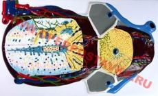 """Барельефная модель по анатомии """"Долька печени. Макро-микростроение"""""""