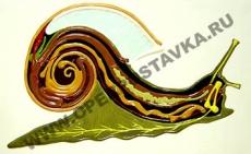 """Барельефная модель по зоологии """"Внутреннее строение брюхоногого моллюска"""""""