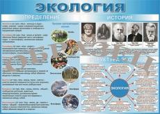 """Виниловая таблица """"Определение, история, структура экологии"""" 100х140 см"""