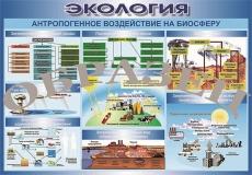 """Виниловая таблица """"Антропогенное воздействие на биосферу"""" 100х140 см"""