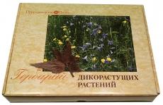 """Гербарий """"Дикорастущие растения"""" (28 видов) Начальная школа"""