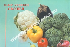 Муляжи овощей (большой)