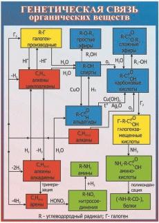"""Виниловая таблица """"Генетическая связь органических веществ """" 100х140 см"""